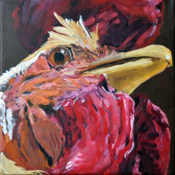 Tierportrait Hahn #2012-23
